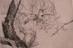 art-borescences_140320_dessin_arbre_exposition_peinture