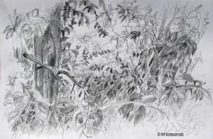 art-borescences_150821_ (2)_dessin_solitude